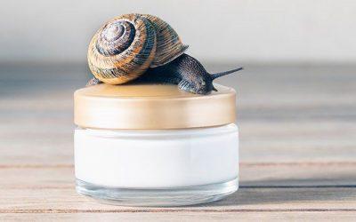 Snail Mucin Products in Dubai